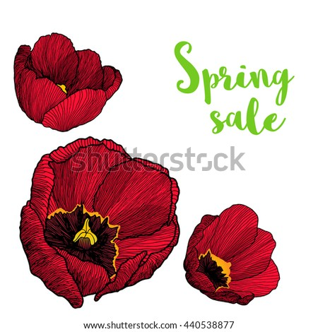 Vector frame corner with hand drawn ink graphic red tulip flowers in a linear style with the text Spring sale. Vintage. For wedding invitation, card design, banner, special offer template. - stock vector