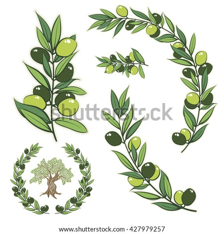 Vector frame with olive branch. Hand drawn circle frame illustration with olive tree. - stock vector