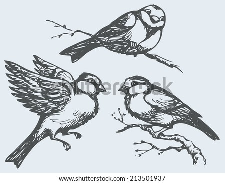 "Vector freehand drawing of series of monochrome sketches ""Birds"". Chickadee, sparrow and bullfinch constitute Paridae, a large family of small passerine birds  - stock vector"