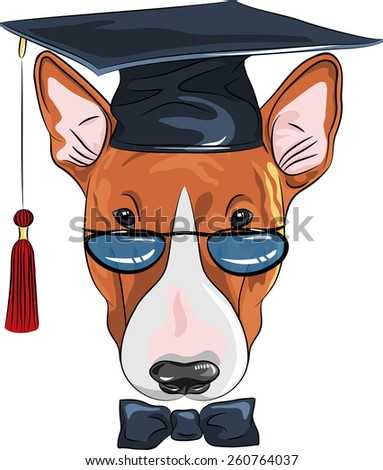 Vector graduated dog Bullterrier breed in glasses and bow tie - stock vector