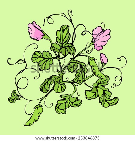 Vector green background with pink lathyrus flower - stock vector