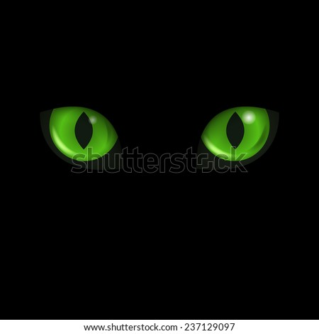 Vector green cat's eyes at the black background. - stock vector
