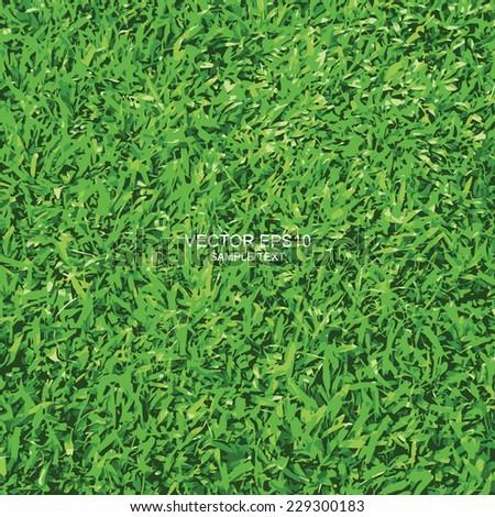 Vector green grass texture background. - stock vector
