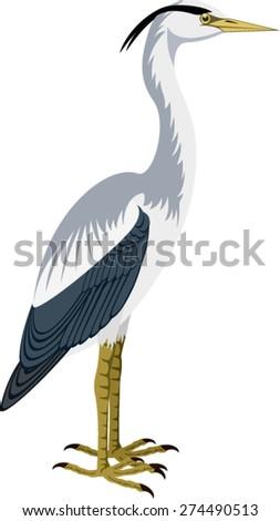 heron stock vectors amp vector clip art shutterstock