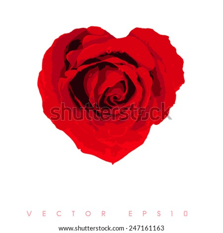 vector - grunge heart of red roses  - stock vector