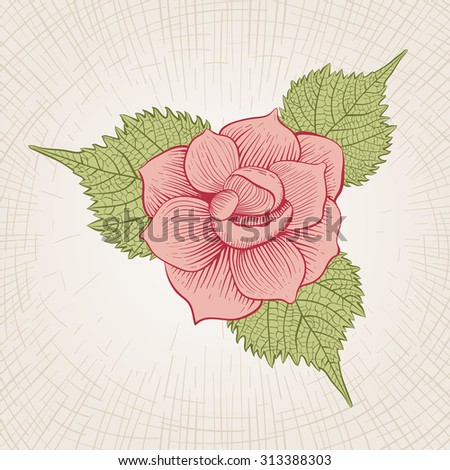 Vector hand drawn rose flower. Global color CMYK.  - stock vector