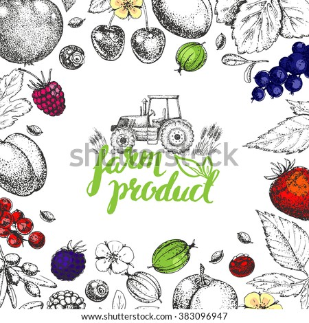 Vector Healthy Food template. Vintage farm logo, fruits and berries. Logotype. Hand drawn. Farmers market. Etching. Sketch. Vegetarian fresh farm product. Eco, raw, organic, bio, natural. Tractor. - stock vector