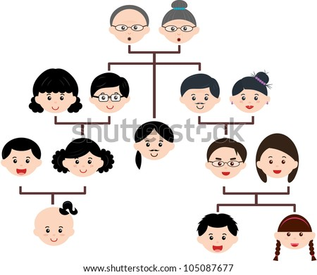 family tree stock photos images amp pictures shutterstock