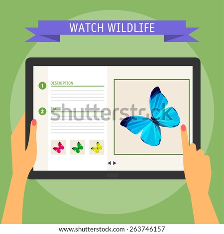 Vector illustration concept of hands holding modern digital tablet and pointing on a screen with website about wildlife. Flat design style, isolated on soft green colored background with slogan - stock vector