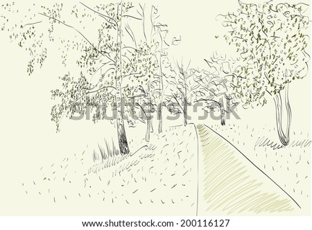 vector illustration Forest Summer landscape with road - stock vector