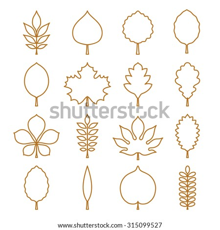 Vector illustration: golden contours of tree leaves (elm, beech, ash, linden, birch, alder, aspen, willow, maple,  poplar, rowan, hawthorn, walnut, chestnut, conker etc.) isolated on white background - stock vector