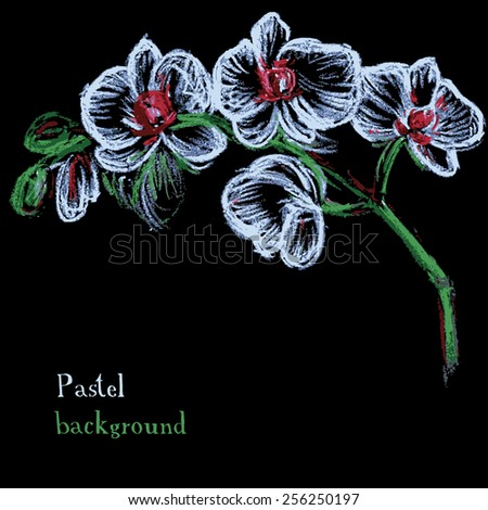 Vector illustration handmade drawing pastel chalks floral background orchid - stock vector