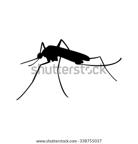 Vector illustration insect. Malaria or mosquito. Mosquito black silhouette. - stock vector