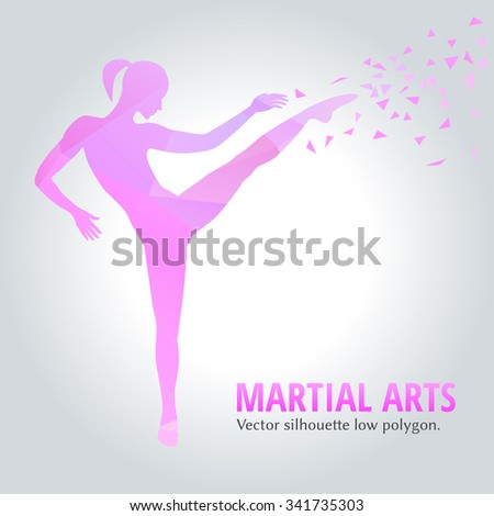 Vector illustration low polygonal. Silhouette of a slim woman doing side kick. female martial art. - stock vector