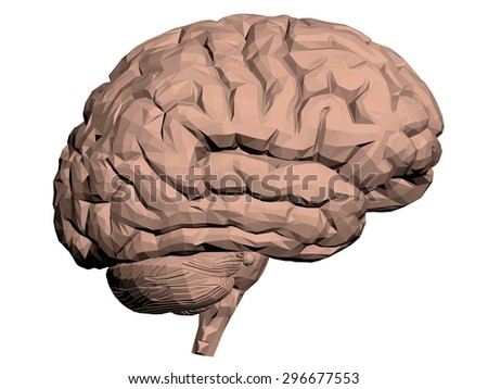 Vector illustration of a brain. Polygon. Isolated. - stock vector