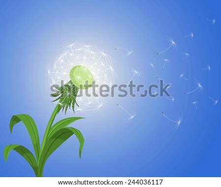 Vector illustration of a dandelion on the wind  - stock vector