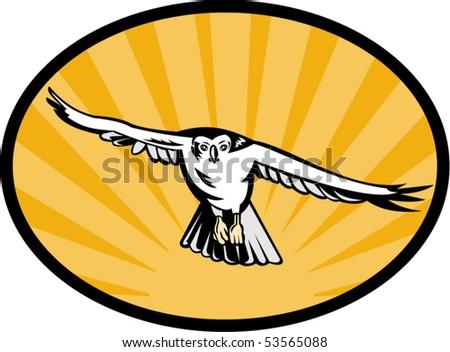 vector illustration of a goshawk bird swooping down - stock vector