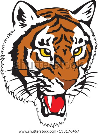 Vector illustration of a tiger head. - stock vector
