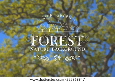 Vector illustration of abstract background for design. Ecology label and Eco design. Forest. Wood. Tropical plants. Blurred background. Nature blurred background. Green foliage background. Template. - stock vector