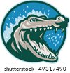 vector illustration of an Angry crocodile or alligator head snapping set inside circle. - stock vector