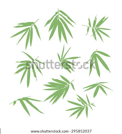 vector illustration of bamboo leaf - stock vector