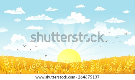 Vector illustration of beautiful landscape. Rural scene with yellow field on a sunny morning - stock vector