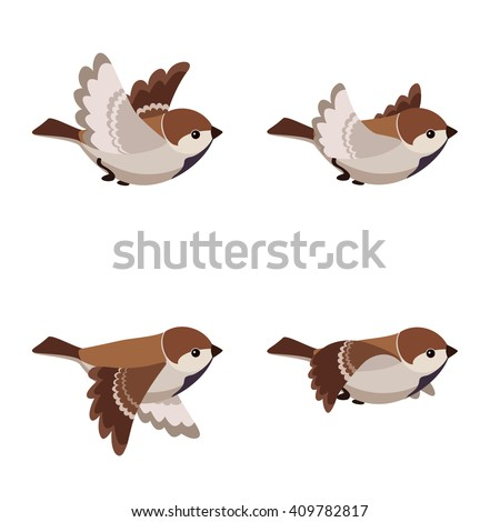 Flying sparrow animated - photo#2