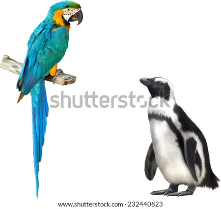 Vector illustration of Colorful blue parrot macaw and pinguin isolated on white background - stock vector