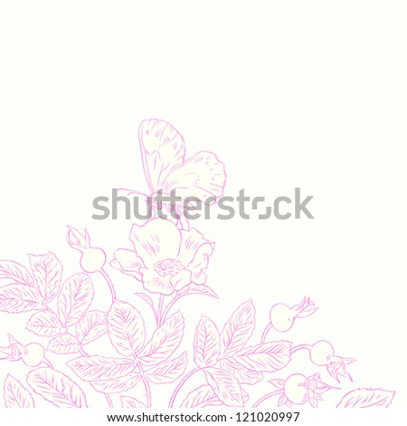Vector illustration of contour drawing beautiful rosehip and butterfly - stock vector
