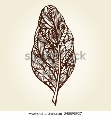 Vector illustration of Decorative feather. Hand drawn vector illustration - stock vector