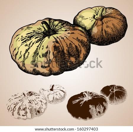 vector illustration of hand-drawn pumpkin - stock vector