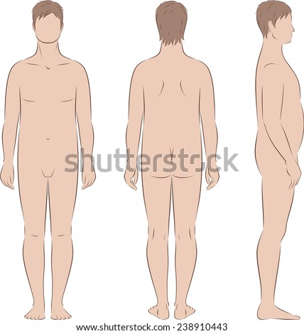 Vector illustration of male silhouette. Body types with increased fat deposition in the abdominal area. Front, back, side views - stock vector
