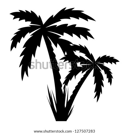 Vector illustration of palm trees .vector - stock vector
