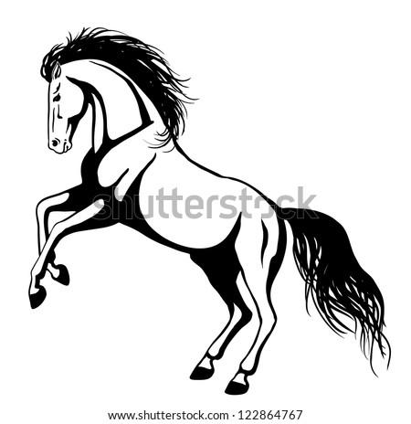 Horse Pictures Black And White Drawing Horse Black And White