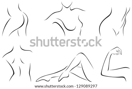 Vector illustration of set of stylized female body parts/ Set of stylized body parts - stock vector