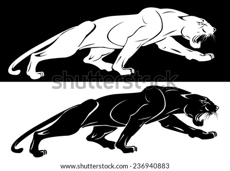 Vector illustration of the silhouettes of the white and the black panthers - stock vector