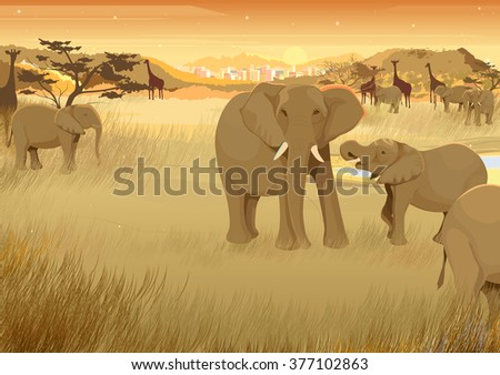 vector illustration of wild animals in jungle of Africa - stock vector