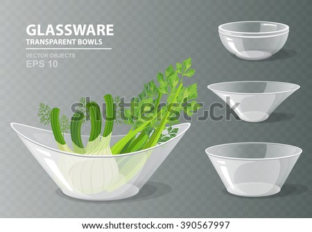 Vector illustration set of four transparent glass bowls with celery and fennel for your design. Kitchen objects on grey checkered background. Cooking collection in realistic style - stock vector