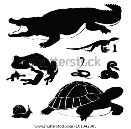 Vector Illustration: Set of reptiles silhouette - stock vector