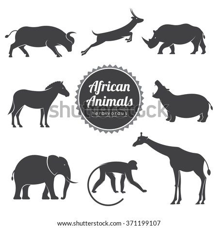 vector illustration set with african wild animals on a white background / vector animals set - stock vector