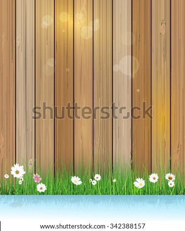 Vector illustration Spring nature background. Green grass and leaf plant, White Gerbera, Daisy flowers and sunlight over wood fence with shadow over water. Blank space for content or your design - stock vector