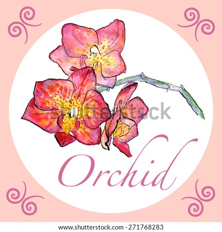 Vector illustration. Watercolor hand drawn orchid with ink outline and text in a circle with hand drawn elements. Tender elegant pink orchid for your summer and spring design - stock vector