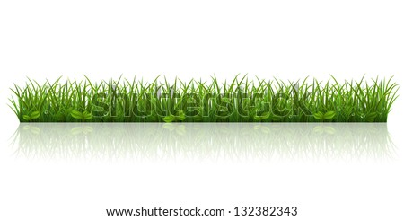 Vector illustration with a beautiful green grass - stock vector