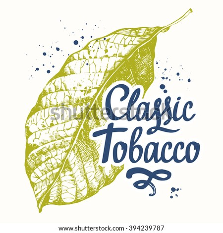 Vector illustration with tobacco leaf. Old classical tradition of smoking tobacco. Lettering design. Tobacco leaf in sketch style. - stock vector