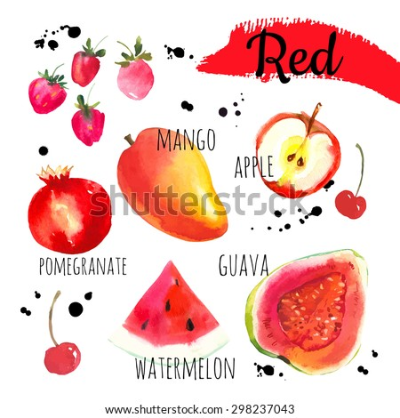Vector illustration with watercolor food.  Set of different fruits and berries: guava, apple, watermelon, mango, cherries, strawberries, pomegranate. Simple painting sketch in vector format. Red set. - stock vector
