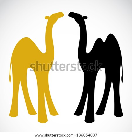 Vector image of an camel on white background - stock vector