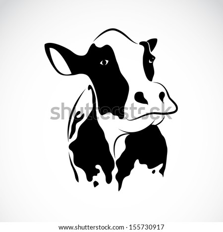 Vector image of an cow on white background - stock vector