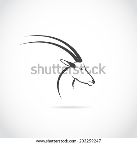 Vector image of an deer head (impala) on white background. - stock vector