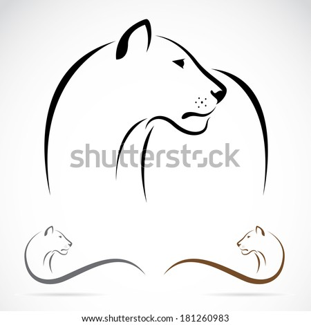 Vector image of an female lion on white background. - stock vector