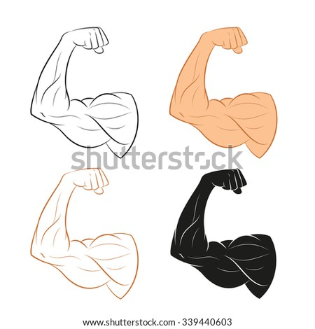 Vector image of  set of muscle arms - stock vector